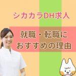 アイキャッチ_シカカラのサービス